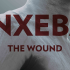 Inxeba- The Wound