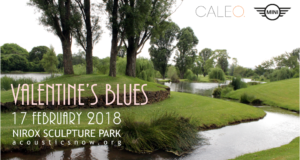 Valentine's Blues at Nirox Sculpture Park