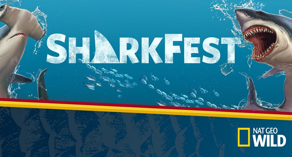 Shark Fest on Nat Geo Wild