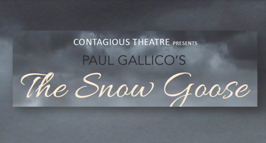 https://www.stageandscreen.co.za/wp-content/uploads/2019/10/The-Snow-GOose.png